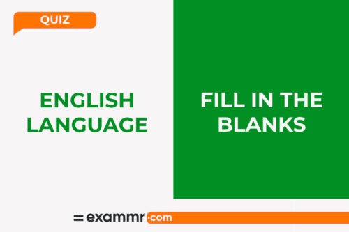 English Language Quiz: Fill In The Blanks
